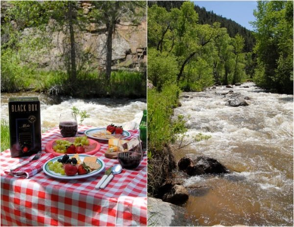 Mountain Picnic by the river