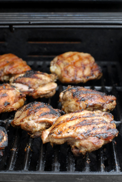 Thai style grilled chicken breasts - BoulderLocavore.com 339