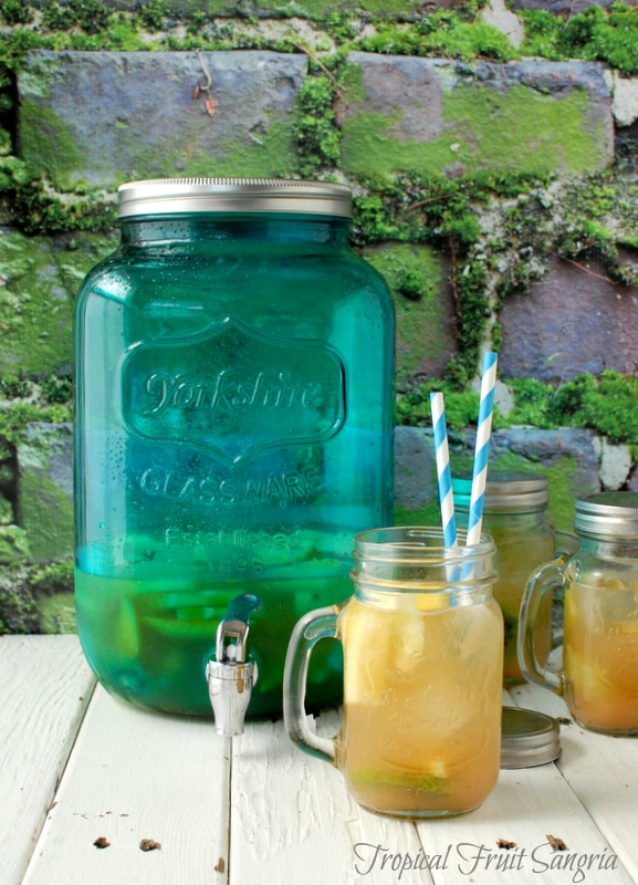 Tropical Fruit Sangria in Old Fashioned Mason Jar Mug - BoulderLocavore.com
