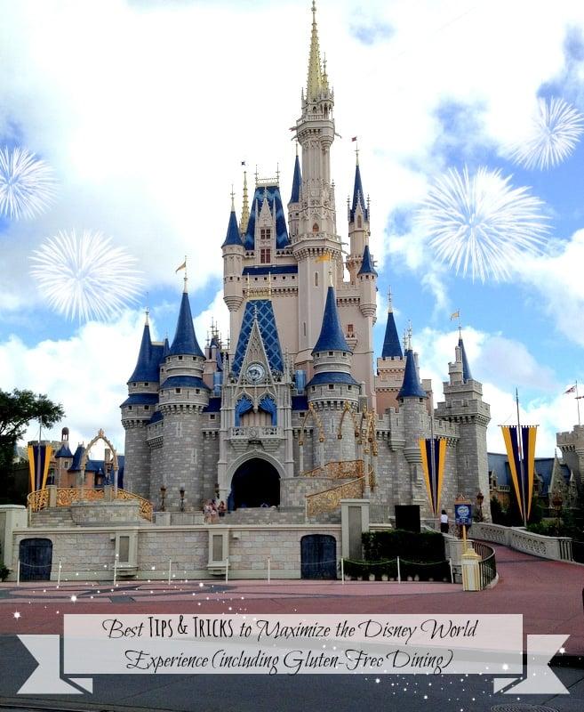 Cinderella's Castle WDW - BoulderLocavore.com