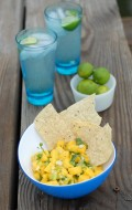 Waiting for Manatees, Tropical Mango Salsa {recipe} & Ponce Inlet, FL hotspots