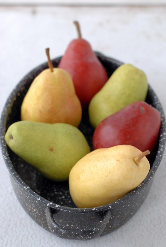 Fall Pears multi colors
