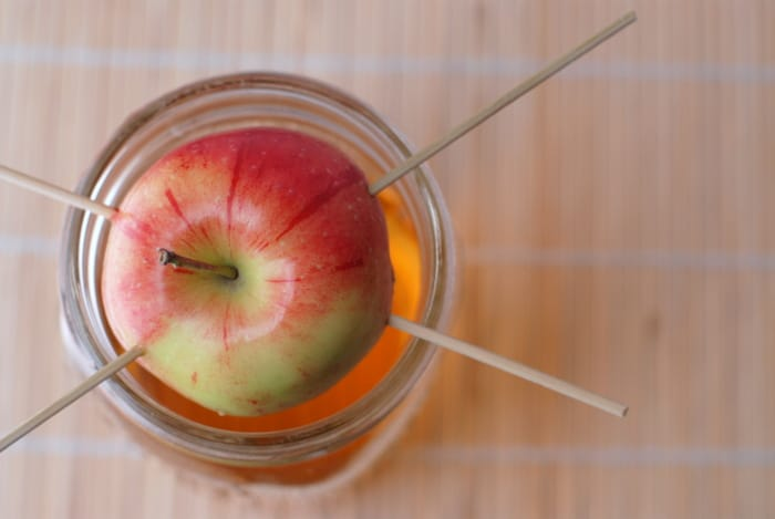 Homemade Apple Infused Vodka | BoulderLocavore.com