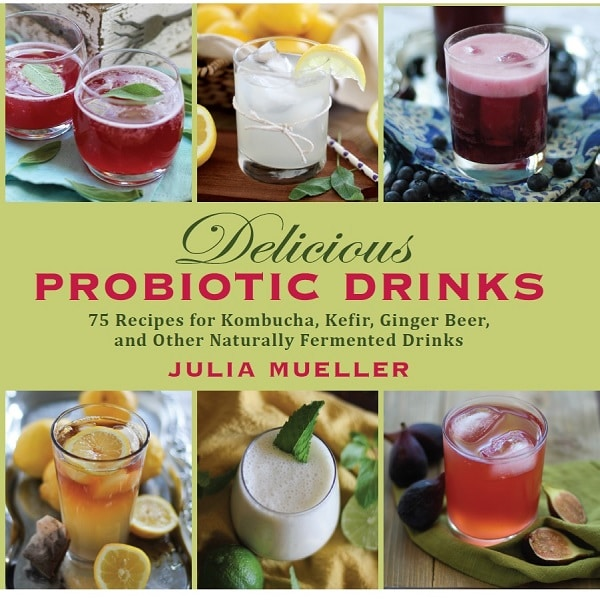 Delicious Probiotic Drinks {Skyhorse Publishing} | BoulderLocavore.com