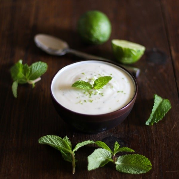 Mojito Yogurt {Delicious Probiotic Drinks | Skyhorse Publishing} | BoulderLocavore.com
