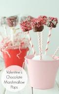 Valentines Chocolate Marshmallow Pops - BoulderLocavore.com