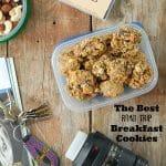 The Best Road Trip Breakfast Cookies