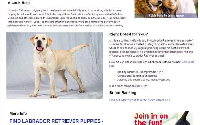 AKC website Breed Guide