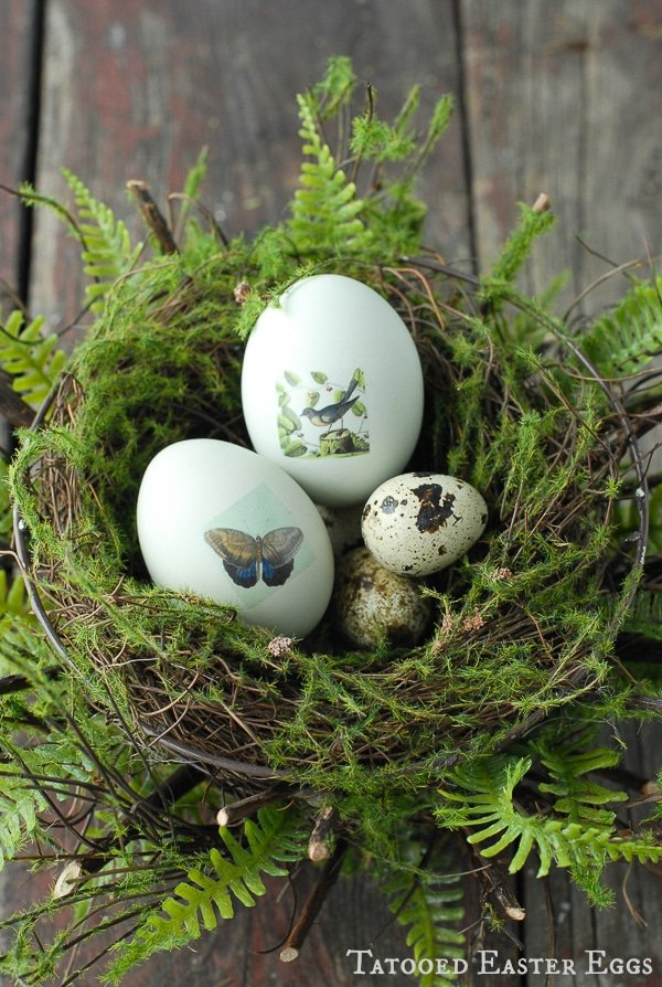 Tatooed Easter Eggs in Nest {tutorial} - BoulderLocavore.com