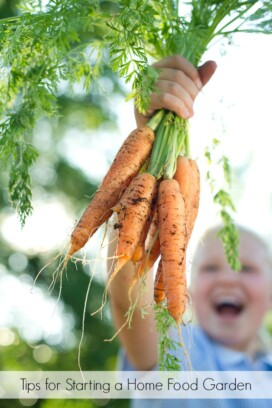 child holding carrots
