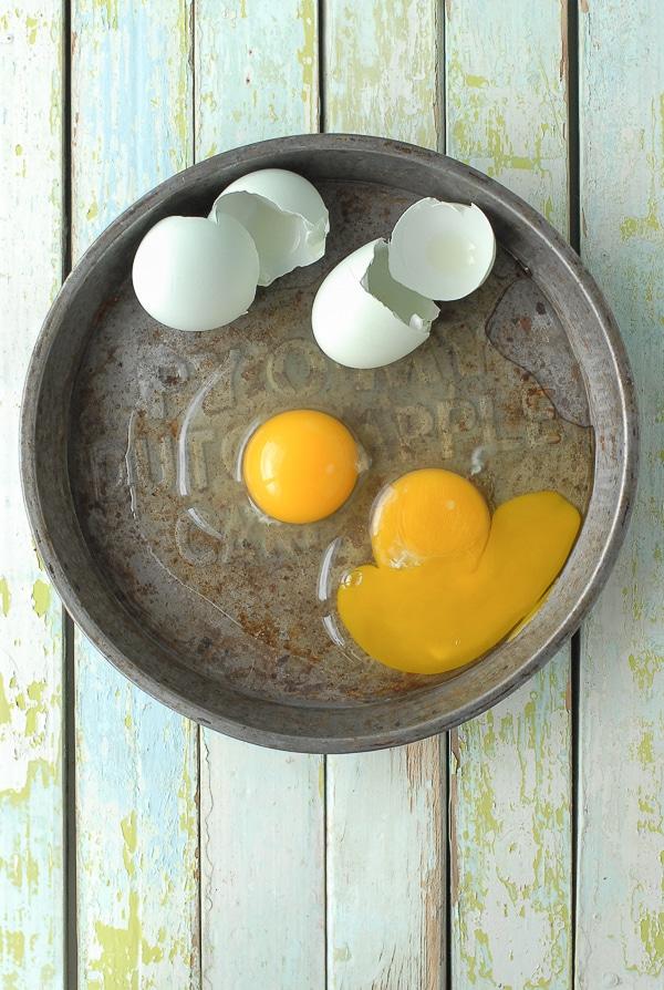 Blue Organic Farm Fresh Eggs - BoulderLocavore.com