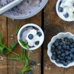 Blueberry Coconut Ice Cream with Dark Chocolate bits {dairy-free}