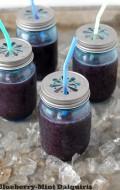 Blueberry-Mint Daiquiris - BoulderLocavore