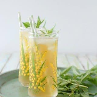 Lemongrass-Lavender Green Sun Tea with mint - BoulderLocavore.com