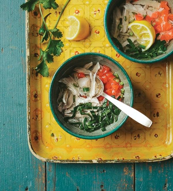 Chicken Soup {Indian Slow Cooker Cookbook} - BoulderLocavore.com