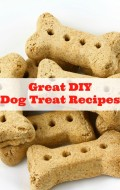 Great DIY Dog Treat Recipes - BoulderLocavore.com