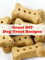 Great DIY Dog Treat Recipes - BoulderLocavore.com
