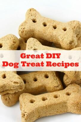 Great DIY Dog Treat Recipes -title image