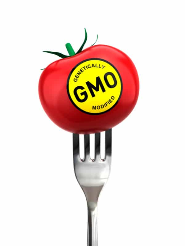 What is a GMO? | BoulderLocavore.com