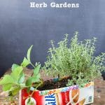 DIY Milk Carton Herb Gardens {tutorial}