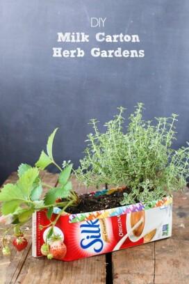 Milk Carton Herb Gardens