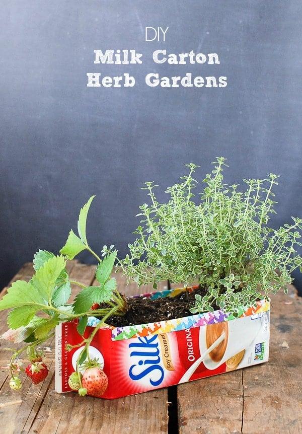Milk Carton Herb Gardens - Tutorial - BoulderLocavore.com
