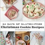 24 Days of Gluten-Free Christmas Cookie Recipes {2014}