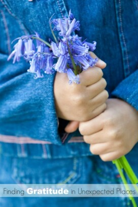 childs hands holding blue flowers