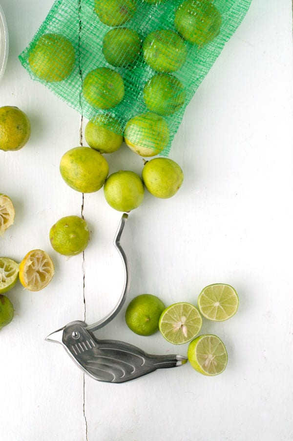 bag of key limes and a bird-shaped citrus squeezer