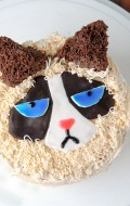 How to Make a Grumpy Cat Cake