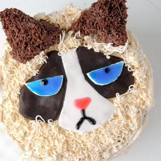 How to Make a Grumpy Cat Cake - BoulderLocavore.com