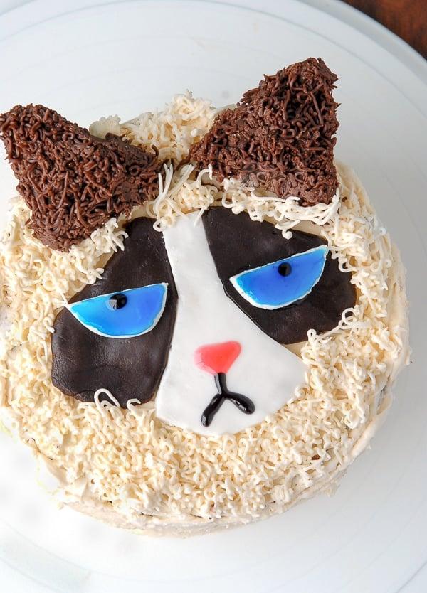 Easy Cat Cake Recipe