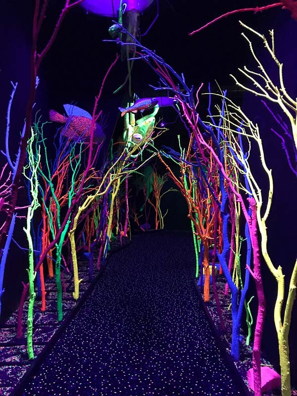 Meow Wolf Santa Fe The House of Eternal Return - Aquarium