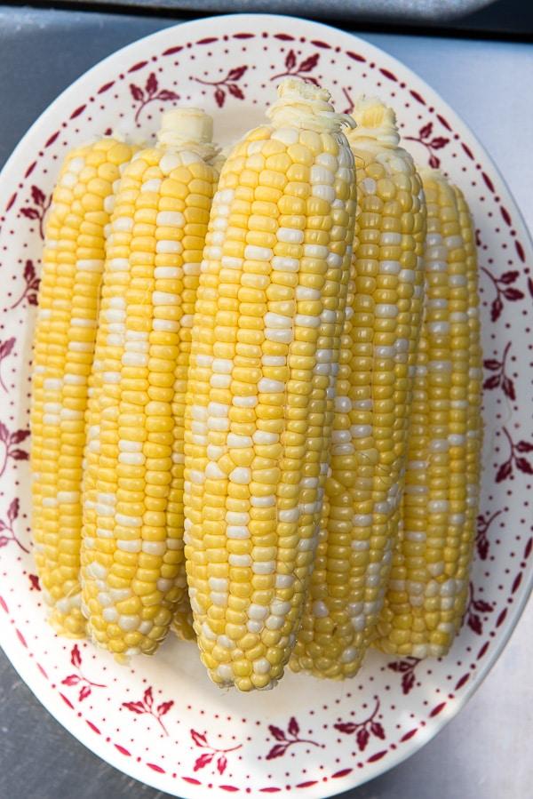 Mixed color summer corn on the cob -  BoulderLocavore.com