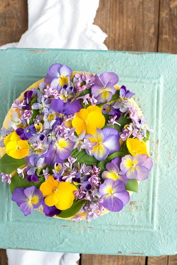 Creamy Lemon Cheesecake with Vanilla Wafer Crust and Edible Flowers