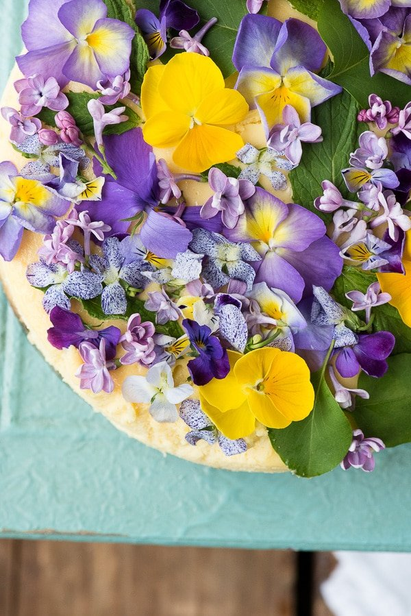 purple and yellow flowers on cheesecake