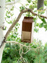 DIY Milk Carton Bird Feeders - BoulderLocavore