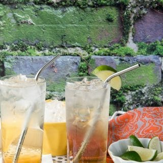 Earl Grey Elderflower Sparkler {cocktail}