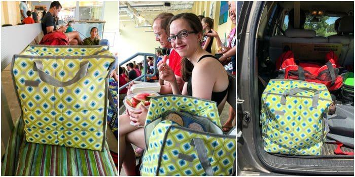 Pack It Freezeable Grocery Bag BoulderLocavore.com
