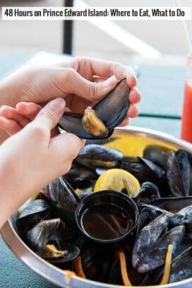 Prince Edward Island Mussels -