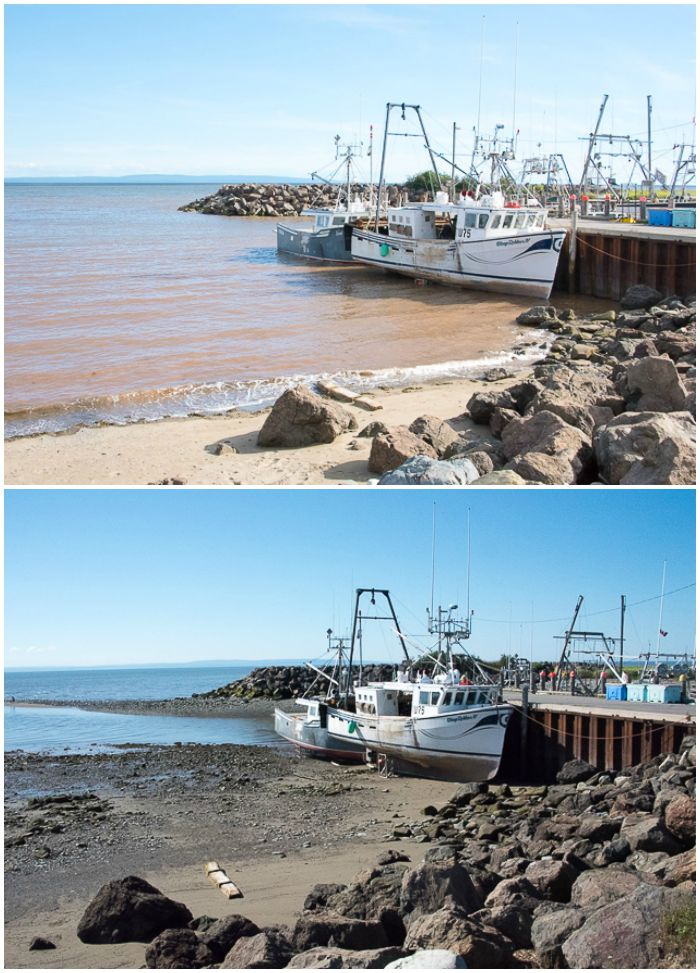 Alma Bay of Fundy boats at tide change BoulderLocavore.com