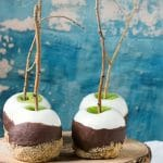 Double Dipped S'Mores Apples on a Stick - BoulderLocavore.com