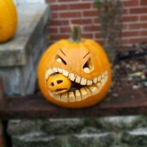 Cannibal Pumpkin | BoulderLocavore.com