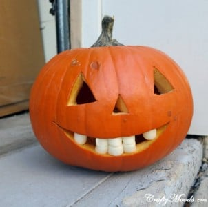 Marshmallow Teeth Pumpkin | BoulderLocavore.com