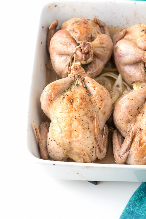 Lemon Herb Roasted Cornish Game Hens trussed in a baking pan