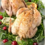Lemon Herb Roasted Cornish Game Hens