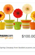 Happy Spring $100 Amazon.com Gift Card Giveaway!