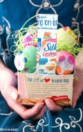 Easy DIY Milk Carton Baskets