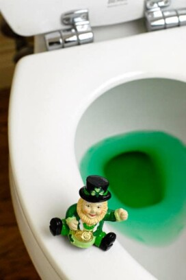 St. Patrick's Day antics - leprechaun sitting on the edge of a toilet with green water