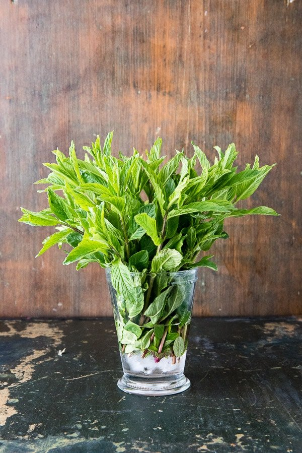 a clear vase filled with sprigs of fresh mint